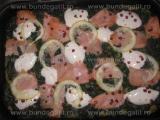 Pizza de malai cu somon-Rodica