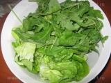 Rucola cu salata verde «1/3»