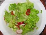 Salata de primavara-2