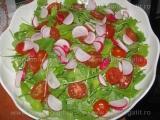 Salata picanta de pui «1/3»