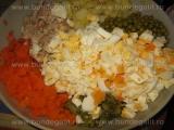 Salata de pui cu legume-Sorin «1/3»