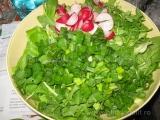 Salata de primavara-3 «2/3»