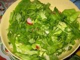 Salata de primavara-3 «3/3»