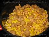 Piure de naut cu porumb si ciuperci «1/3»